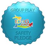 Safety Pledge