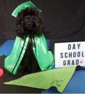 Day School Graduation